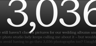 3,036 wedding photos to choose from
